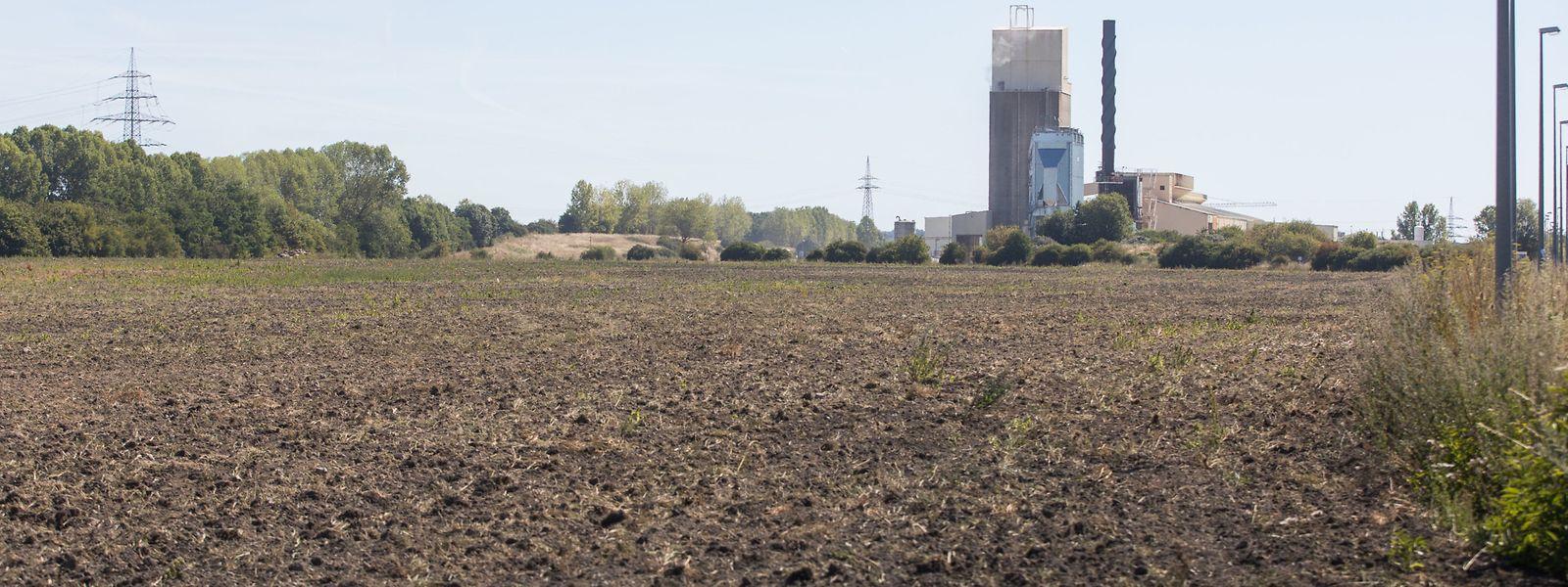 Die Joghurtfabrik in Bettemburg hat sich am Dienstag endgültig in ein Luftschloss verwandelt.