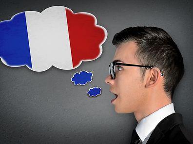 55.8% des entreprises interrogées utilisent le français comme langue principale