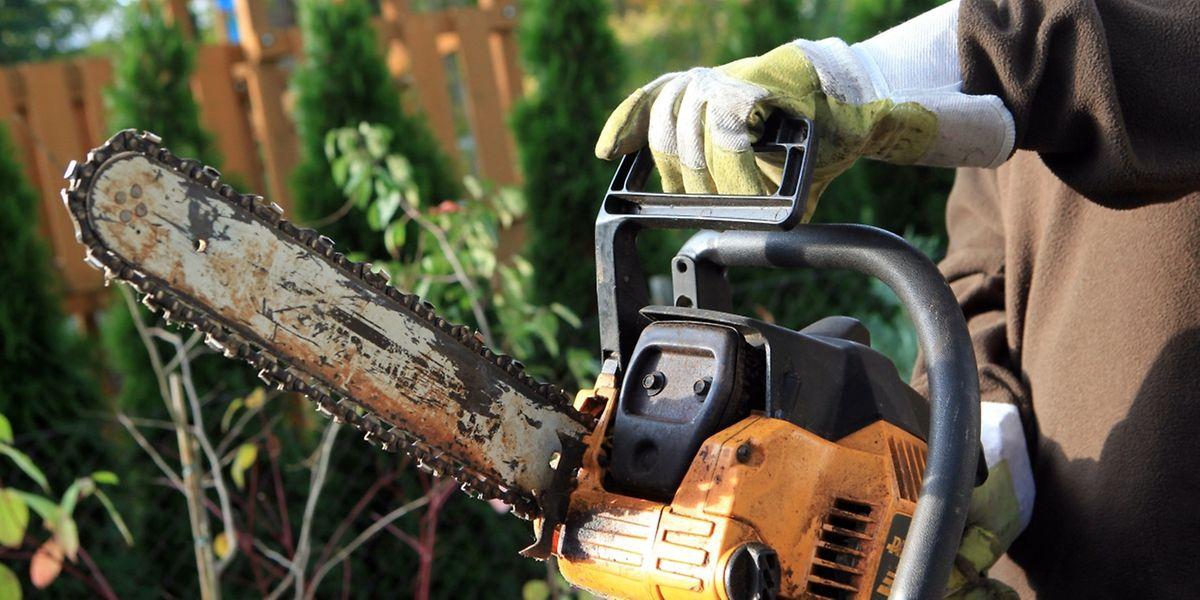Mit kraftvollen Kettensägen lässt sich Brennholz zerkleinern, aber auch manche andere Arbeit im Garten erledigen.