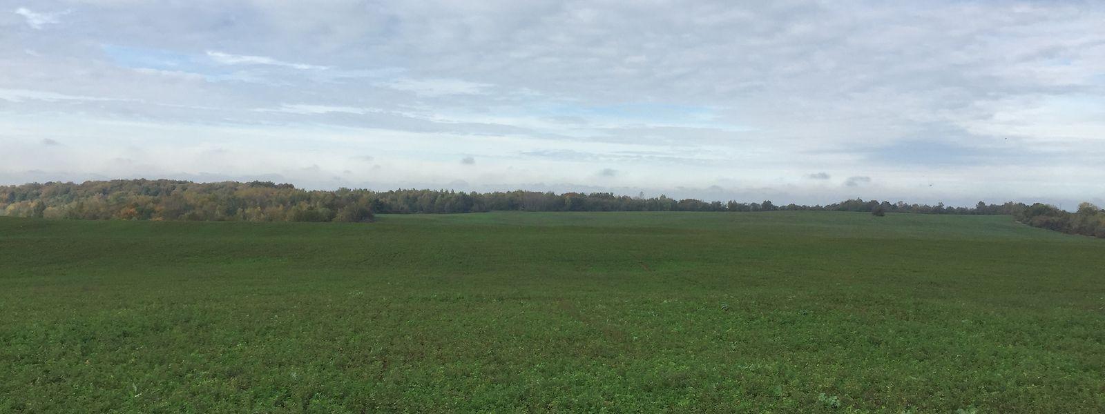 Après l'achat, le terrain reste en territoire français et sera soumis à la législation nationale.