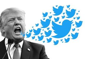 Trump Twitter (Foto: AFP/Fotomontage: Peggy Conrardy)