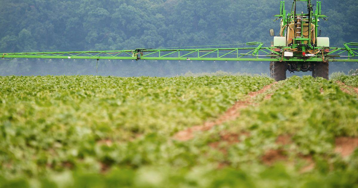 Les agriculteurs sont incités à réduire leur utilisation de pesticides et d'engrais par le gouvernement, à coups de millions.