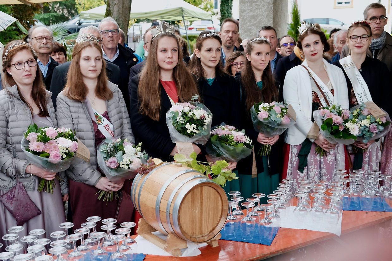 As rainhas do vinho e as suas princezas