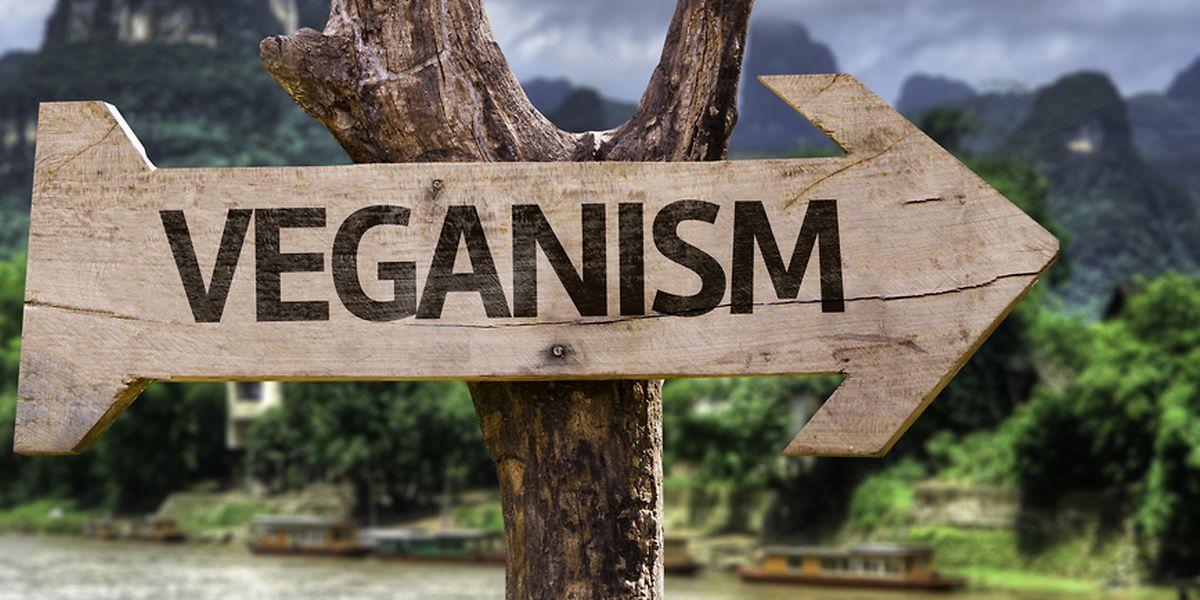 Dem Kind fehlten angesichts der streng veganen Ernährung wohl wichtige Bestandteile zur Entwicklung.