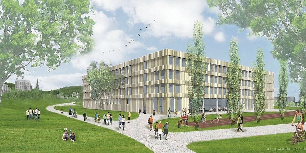 L'école internationale sera construite sur 4 étages totalisant 17.500 m2.