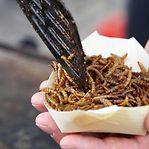 Comer insetos secos? União Europeia aprova