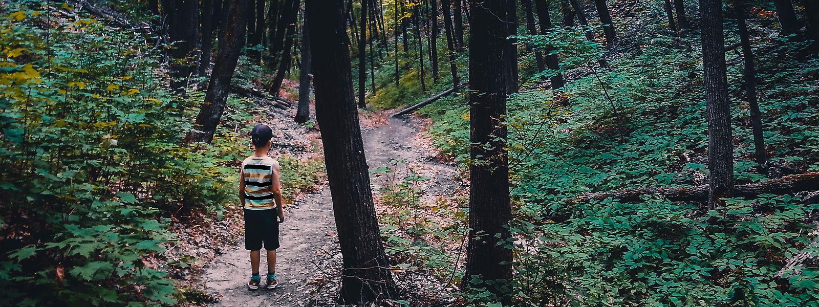 Für einen vierjährigen Jungen endete ein KiTa-Ausflug am Freitag in Tränen.