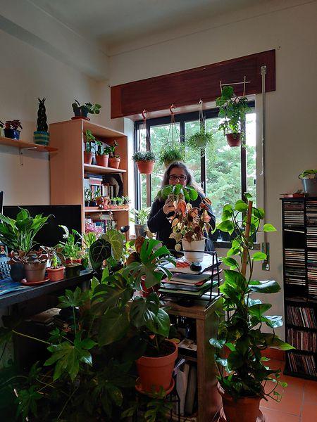 O entusiasmo de Sandra Ferrás com as plantas acompanhou a mudança da sua rotina com a pandemia e é tanto um hobby como uma terapia contra os dias cinzentos e incertos criados pela covid-19.
