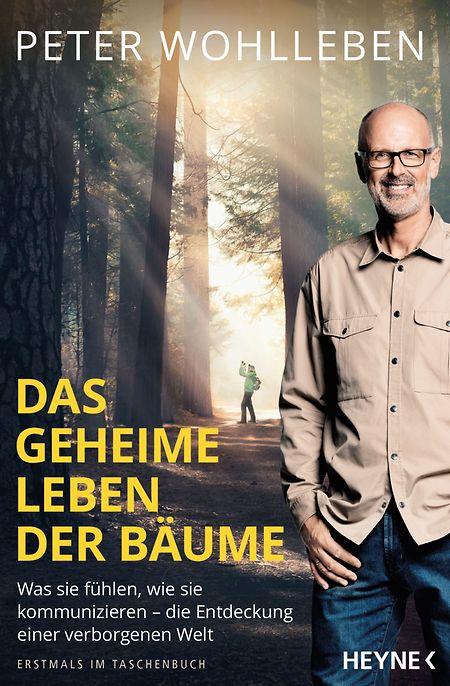 """Peter Wohlleben: """"Das geheime Leben der Bäume"""", 224 Seiten, Heyne, ISBN: 978-3453604322, € 12"""