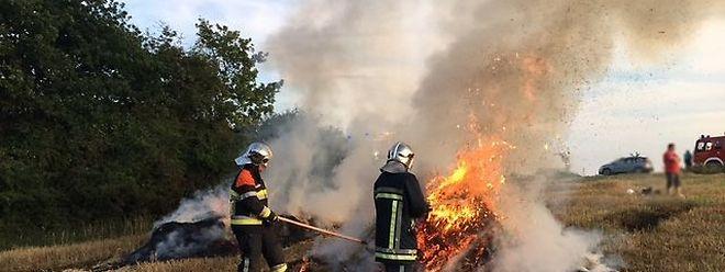Auf diesem Feld fielen am vergangenen Sonntag 150 Heuballen den Flammen zum Opfer. Foto: Anne-Aymone Schmitz