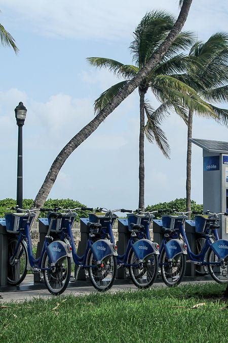 Die USA sind zwar das Land der Autofahrer - doch im Miami können Touristen auch Leihfahrräder nutzen.