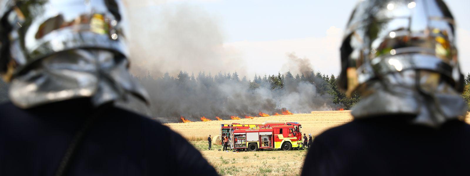 Ein Feldbrand in Hamm war im Juli der erste von mehreren Großeinsätzen.