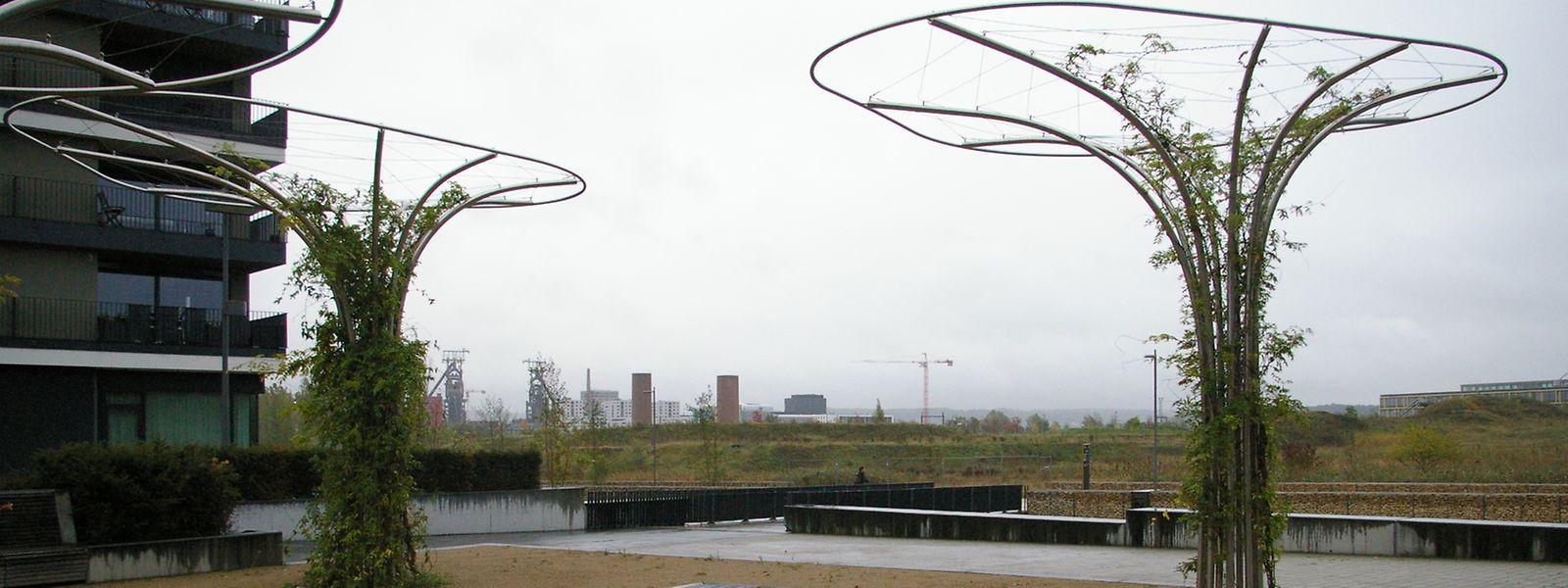 Die Ediffschule und die neue Grundschule sollen in Belval-Sud, unweit des hier abgebildeten Marcelle Lentz-Cornette-Platzes entstehen.