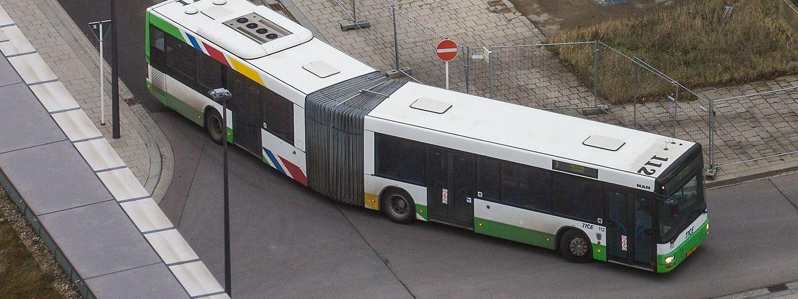 Kommendes Jahr wird der TICE um 18 neue Gelenkbusse erweitert.