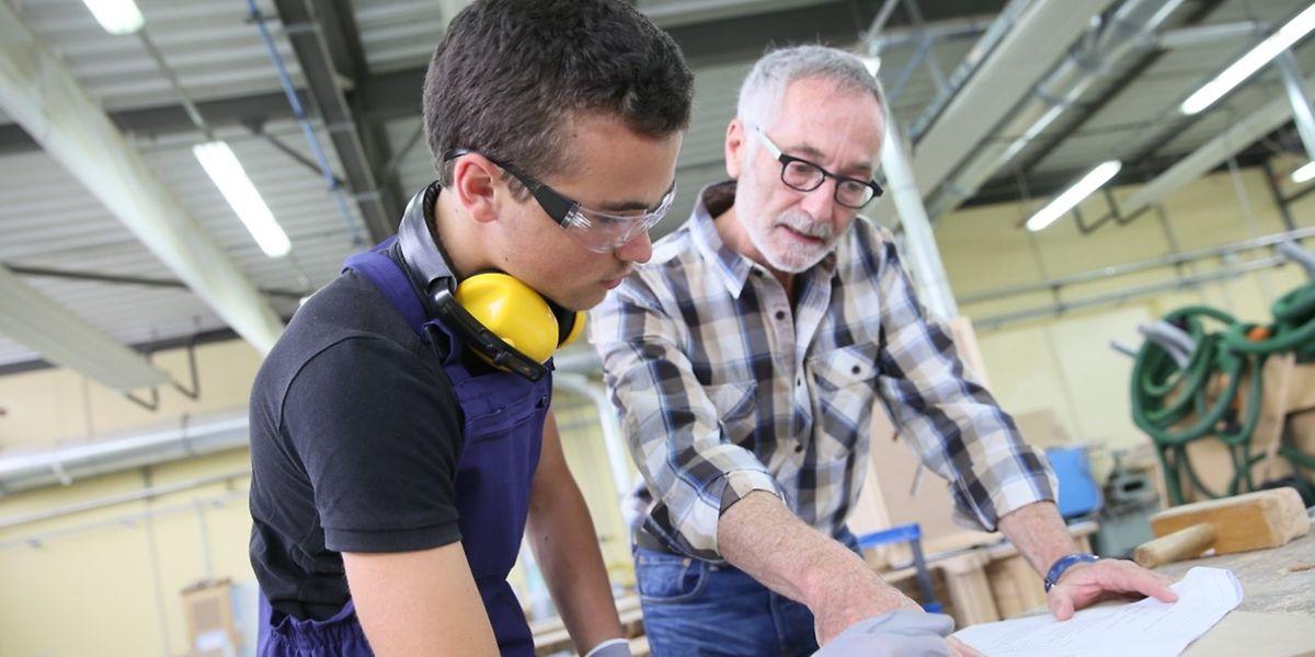 Mehr als 8.000 Menschen sind derzeit in einer Berufssausbildung.