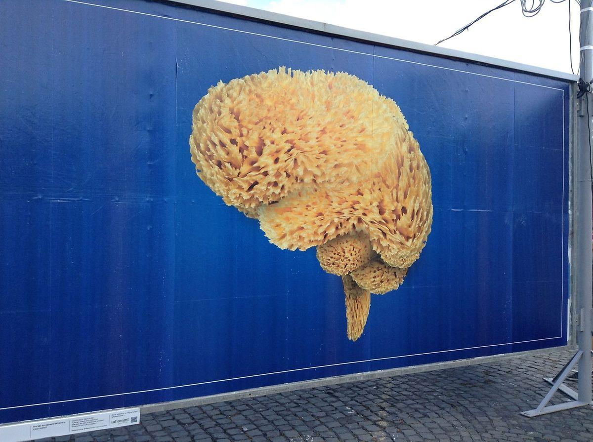 Um cartaz anti-Orban, que evoca a lavagem de cérebro que o Governo húngaro está a fazer ao povo