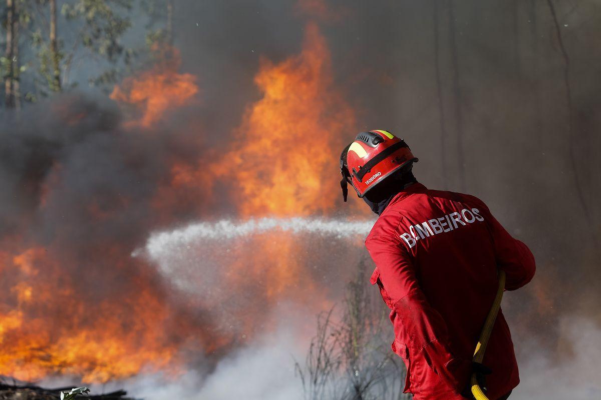 Um bombeiro combate o incêndio que deflagrou ao início da tarde junto à aldeia de Pisão, em Barcouço, e obrigou ao corte da auto-estrada A1, Mealhada, 10 de agosto de 2017. PAULO NOVAIS/LUSA