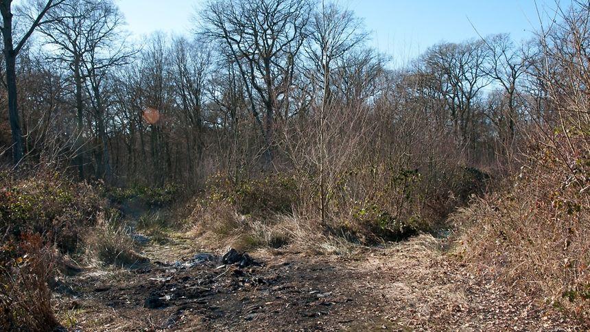 C'est dans le village de Roussy-le-Village que le corps d'Ana Lopes a été retrouvé brûlé dans sa voiture.