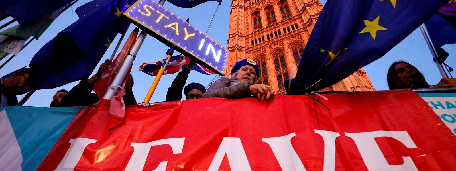 Demonstranten beider Lager vor dem Parlament in Westminster.