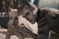 """Gewöhnungsbedürftig präsentiert sich der Anblick der pelzigen Darsteller – hier Victoria (Francesca Hayward, l.) und Munkustrap (Robbie Fairchild) –, denn wo z.B. die Neuauflage der """"Planet of the Apes"""" mit ihren Computer-Effekten fasziniert, wirkt """"Cats"""", wohl durch die Kontrastierung von Tanzeinlagen und bizarr wirkender Körperhaltungen, geradezu befremdlich."""