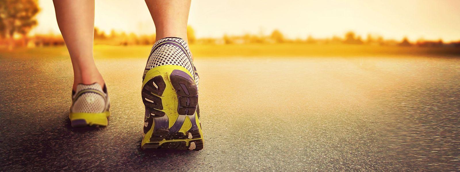 Au total, pour l'étude, les participants auront couru plus de 220.000 kilomètres sur tapis roulants, chemins et routes.