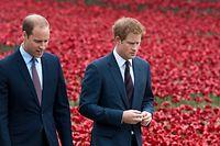 ARCHIV - 05.08.2014, Großbritannien, London: Prinz William (l), Herzog von Cambridge, und sein Bruder Prinz Harry gehen bei einer Gedenkveranstaltung für die Opfer des Ersten Weltkriegs durch ein Meer aus roten Keramik-Mohnblumen im Graben des Tower of London. Der britische Prinz Harry hat nach monatelangen Medienspekulationen zum ersten Mal ein angespanntes Verhältnis zu seinem Bruder William (37) eingeräumt. Foto: Will Oliver/epa/dpa +++ dpa-Bildfunk +++