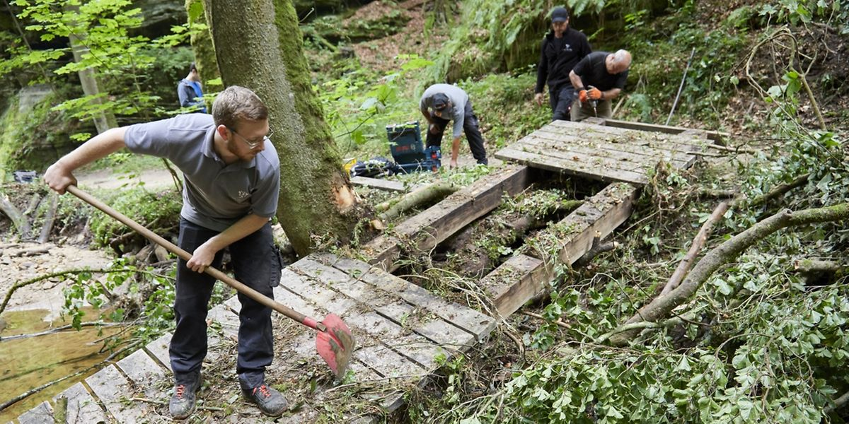 Mit vereinten Kräften packen Waldarbeiter, Beschäftigungsinitiativen und Freiwillige mit an, um Brücken zu erneuern.