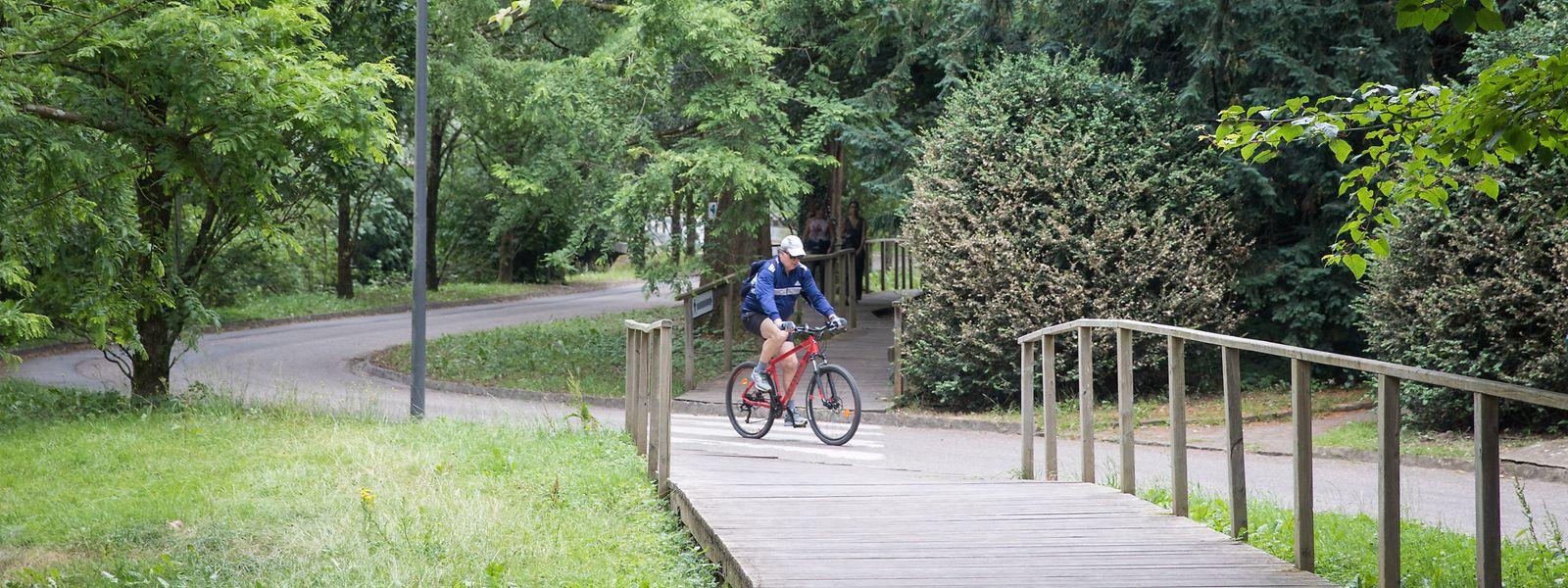 Die Unesco-Biketour in der Hauptstadt ist nur eine Möglichkeit von vielen für einen spannenden Sommer im Großherzogtum.