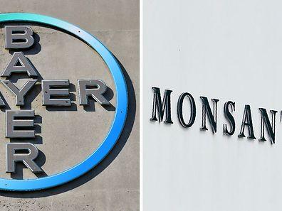 A eux deux, Bayer, également groupe de pharmacie, et Monsanto pèseront 23 milliards d'euros de chiffre d'affaires annuel, avec pas loin de 140.000 employés.
