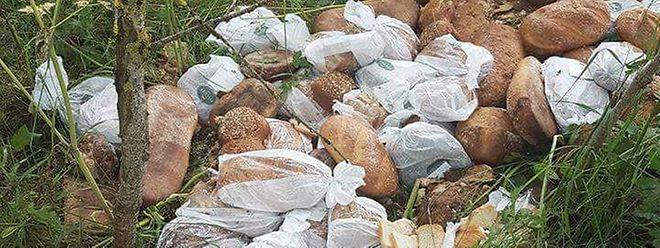 Eine nicht unerhebliche Menge an Brotwaren - etikettiert mit dem Namen der Bäckerei Fischer - wurde vor kurzem in einem Waldstück bei Wintger entsorgt.