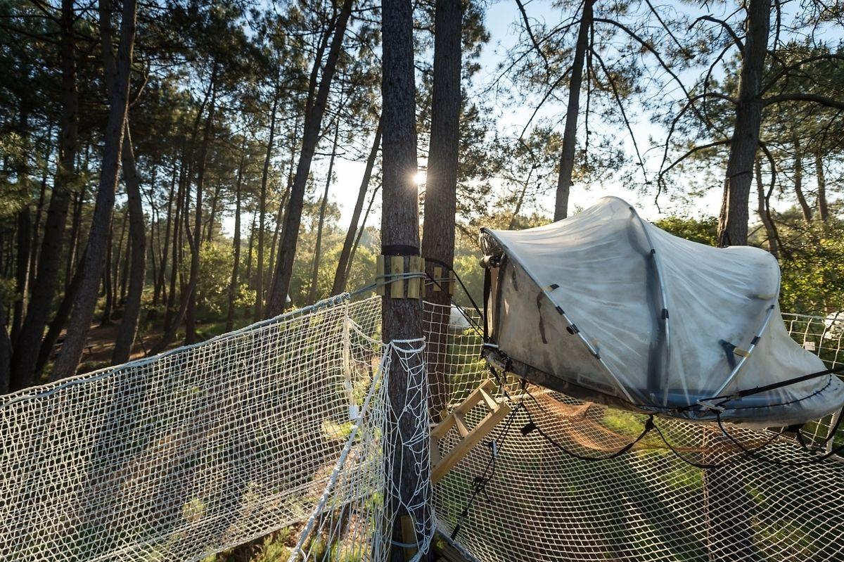 Ein Netz sorgt für die nötige Sicherheit in vier Metern Höhe.