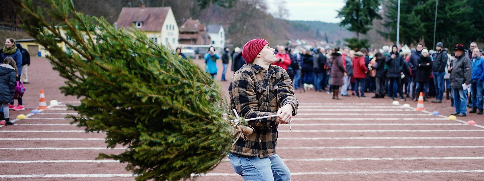 Ein Teilnehmer schleudert bei der 14. Weltmeisterschaft im Weihnachtsbaumwerfen eine Fichte.