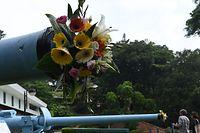 Blumen statt Raketen: Experten warnen vor zu hohen Erwartungen.