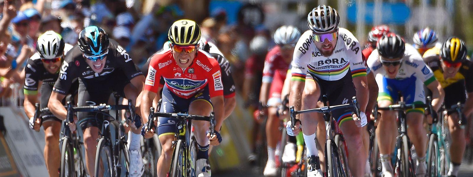 Orica-Fahrer Caleb Ewan (rot) hatte am Ende erneut die schnellsten Beine. Weltmeister Peter Sagan (rechts) hatte das Nachsehen.