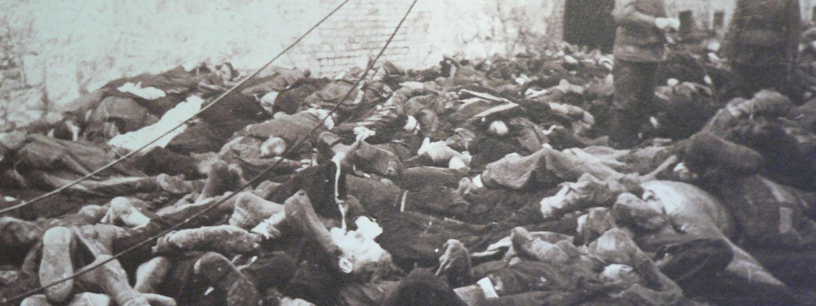 Sowjetische Soldaten vor dem Leichenberg der Tage zuvor ermordeten Sonnenburg-Insassen.