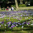 Frühling - Park Luxemburg - Photo: Johnny Spitoni