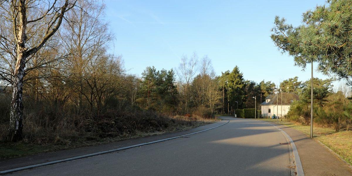 """Entlang der Straße """"op der Berk"""" in Bridel werden links die Asylantenstrukturen und rechts die sozialen Wohnungen entstehen."""