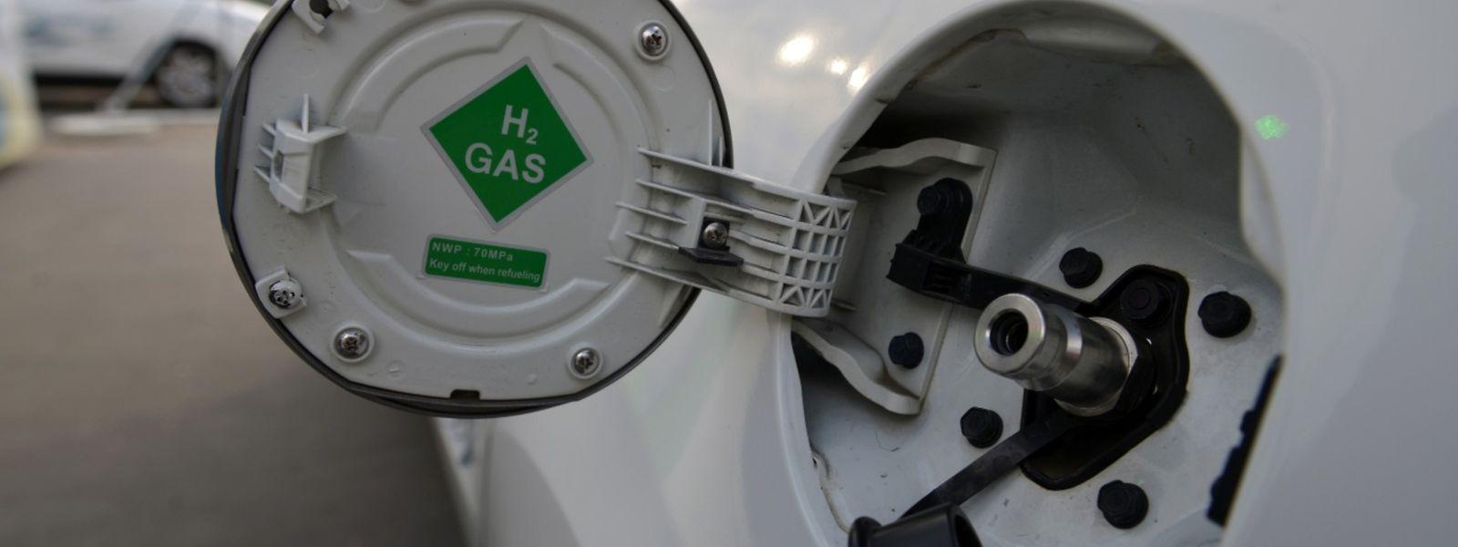 Pour l'instant, la ministre du Développement durable préfère réserver ce type de moteurs aux «véhicules plus lourds», pour trouver ainsi un équilibre entre faibles émissions carbones et rendement.