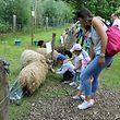 In Kockelscheuer verbrachten die Besucher einen tollen Familien- und Naturtag.