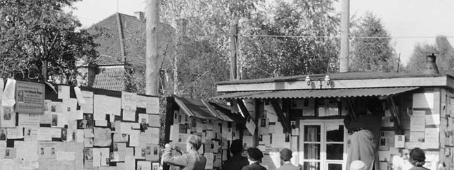 Nach dem Zweiten Weltkrieg sorgte das Deutsche Rote Kreuz dafür, dass sich durch Kriegswirren auseinander gerissene Familien wieder finden konnten.