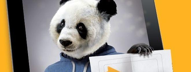 Der Panda ist das diesjährige Maskottchen der Kampagne.