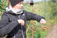 50 Jahre Schlammwiss, Feuchtgebiet und Vogelberingungsstation