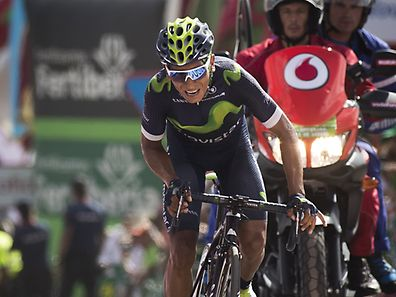 """Movistar's Colombian cyclist Nairo Quintana crosses the finish line during the 8th stage of the 71st edition of """"La Vuelta"""" Tour of Spain, a 181,5 km route between Villalpando to La Camperona on August 27, 2016. / AFP PHOTO / JAIME REINA"""