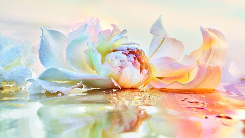 """Die neue """"J'adore""""-Variante weckt Bilder einer imaginativen """"Fleur de Sel""""."""