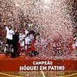 Os jogadores do SL Benfica festejam a conquista do 22.� campeonato portugu�s de h�quei em patins, ap�s vencerem a equipa do FC Porto num jogo disputado no pavilh�o da Luz, em Lisboa, 18 de abril de 2015. ANT�NIO COTRIM/LUSA