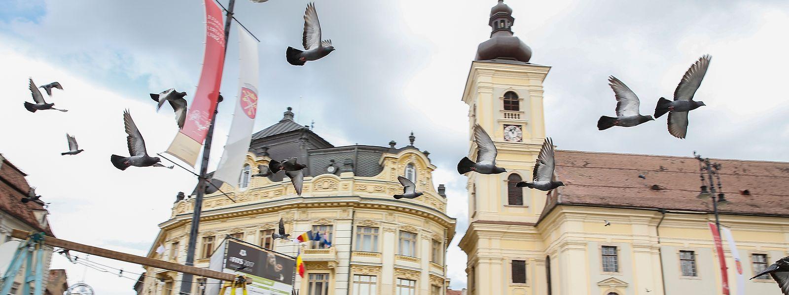 Monumentale Prachtbauten und moderne Kunstveranstaltungen: Sibiu weiß die Besucher mit mehreren Facetten zu begeistern.