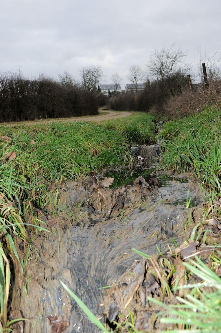 Der Fluss Syr wurde in Berg durch eine bislang unbekannte Substanz verunreinigt.