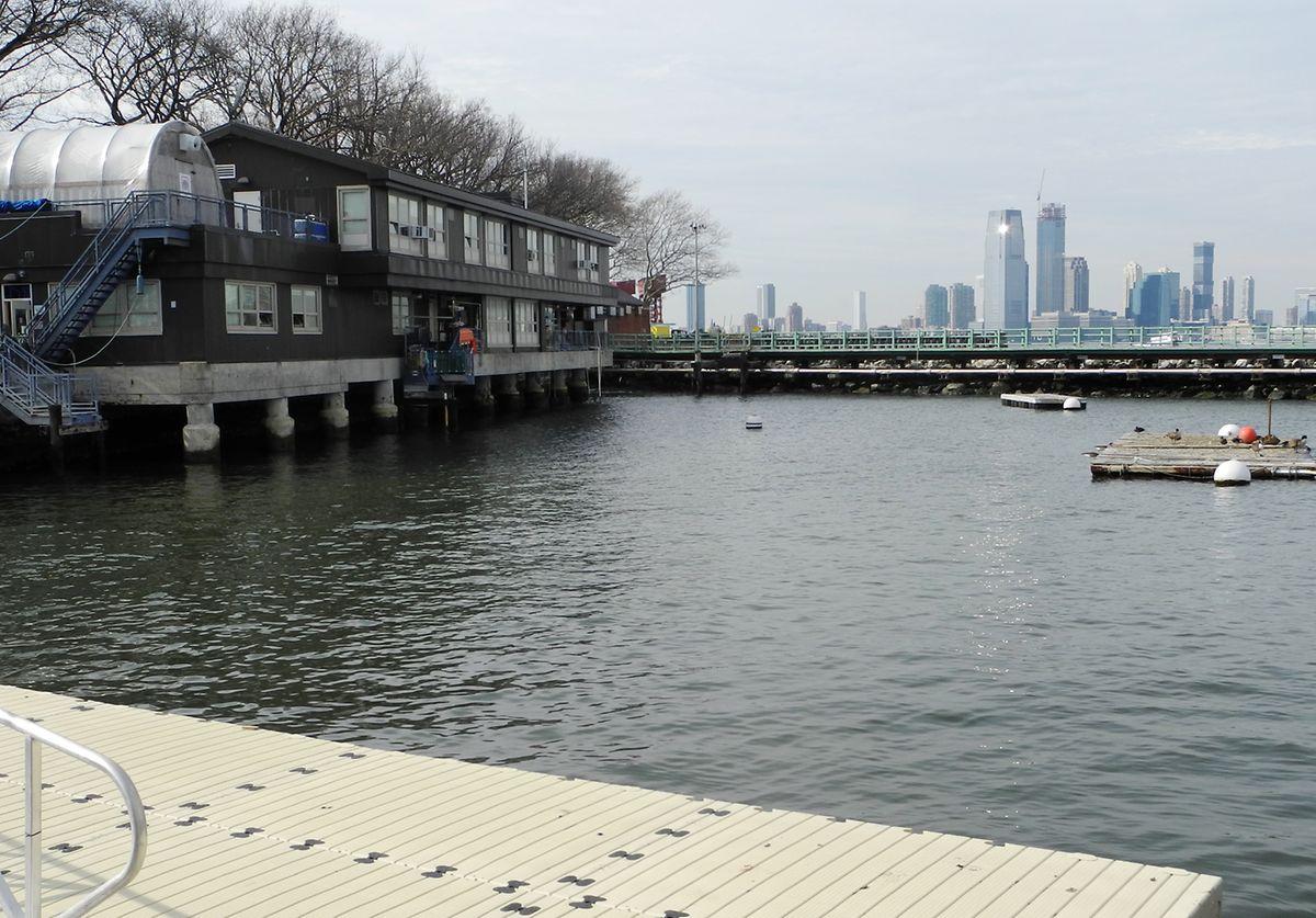Das Labor des «Billion Oyster Project» auf der Insel Governors Island, wo Umweltschützer und Schüler daran arbeiten, die Austernbestände im New Yorker Hafen wieder zu erhöhen.