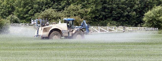 Durch den Aktionsplan soll der Einsatz von Pestiziden in der Landwirtschaft reduziert werden.