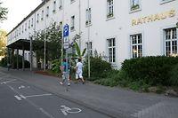 Die Trierer Stadtverwaltung soll künftig in ihrer Arbeit noch stärker auf den Klimaschutz achten.